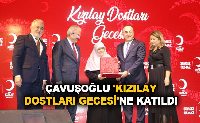 Çavuşoğlu 'Kızılay Dostları Gecesi'ne katıldı