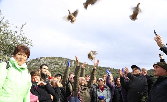 150 keklik kahramanlar anısına doğayla buluşturuldu