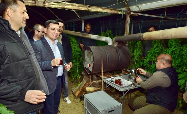 Başkan Tütüncü, üreticiyle sera nöbetinde