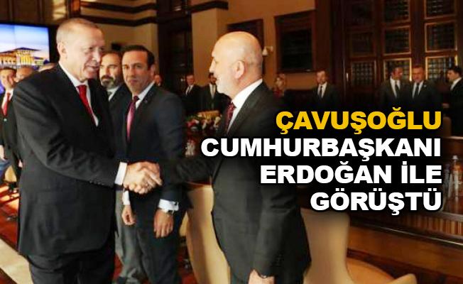 Çavuşoğlu, Cumhurbaşkanı Erdoğan ile görüştü