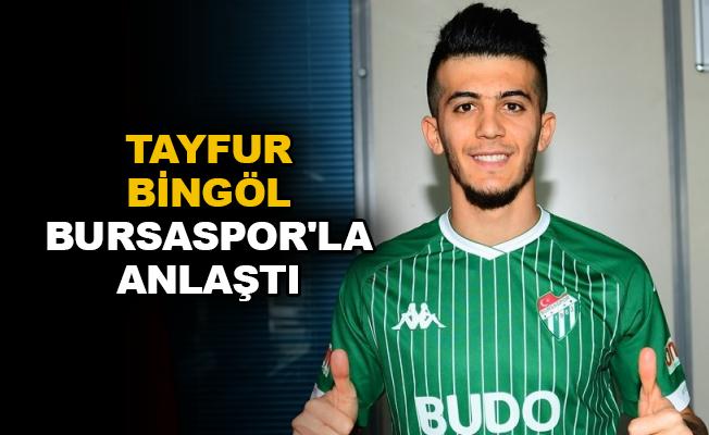 Tayfur Bingöl Bursaspor'la anlaştı