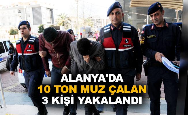 Alanya'da 10 ton muz çalan 3 kişi yakalandı