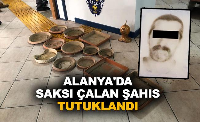 Alanya'da saksı çalan şahıs tutuklandı