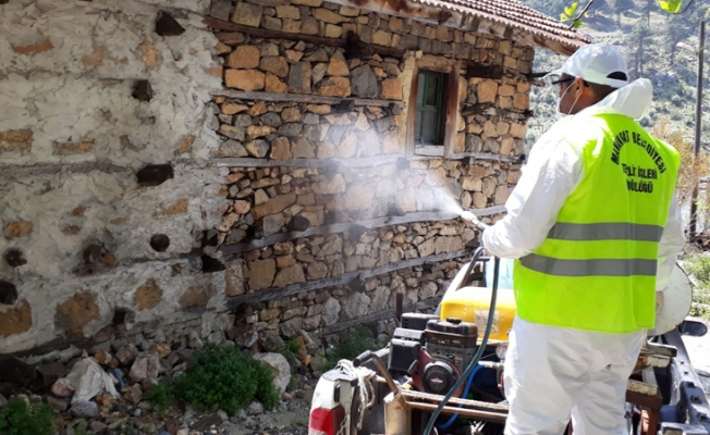 Manavgat'ta korona testi pozitif çıkan yaşlı kadının evi dezenfekte edildi