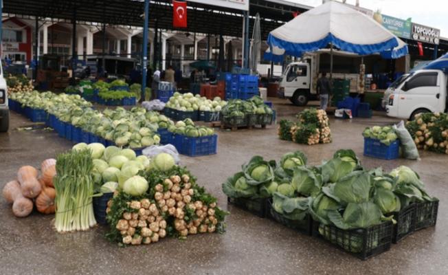 Ürün bolluğu yaşanan Antalya halinden Türkiye'ye sebze meyve sevkiyatı tam gaz devam ediyor