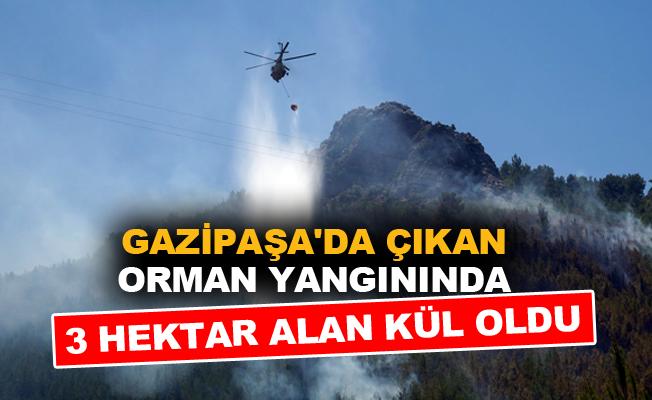 Gazipaşa'da çıkan orman yangınında 3 hektar alan kül oldu