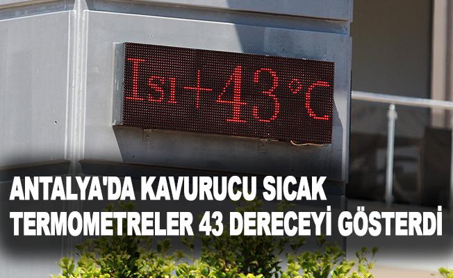 Antalya'da kavurucu sıcak.. Termometreler 43 dereceyi gösterdi