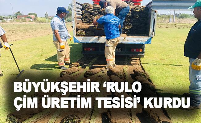 Büyükşehir 'Rulo Çim Üretim Tesisi' kurdu