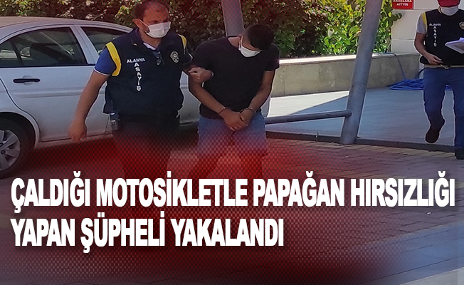 Çaldığı motosikletle papağan hırsızlığı yapan şüpheli yakalandı