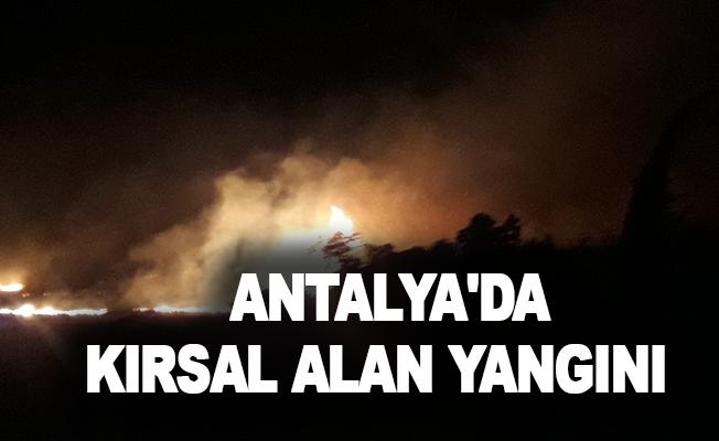 Antalya'da kırsal alan yangını
