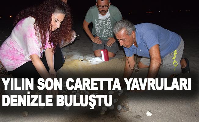 Yılın son caretta yavruları denizle buluştu