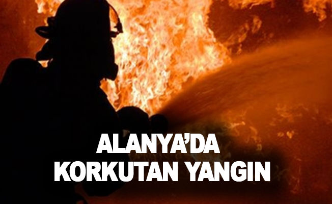 Alanya'da korkutan yangın! Ev ve otomobil küle döndü
