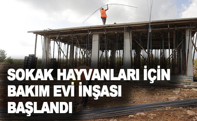 Büyükşehir, Sokak Hayvanları Bakım Evi inşasına başladı