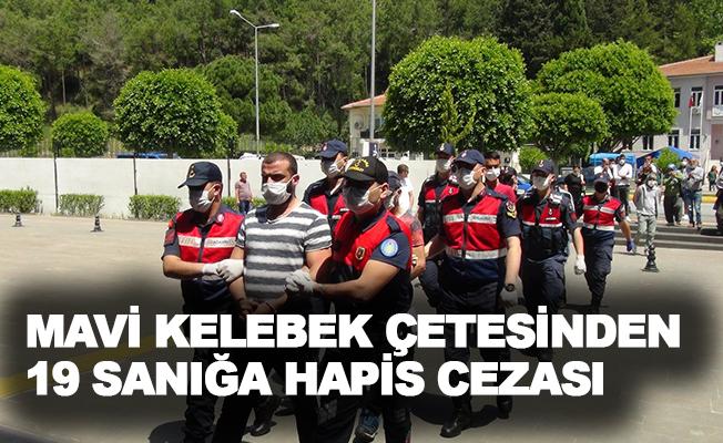 Mavi Kelebek çetesinden 19 sanığa hapis cezası