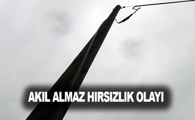 Antalya'da akıl almaz hırsızlık olayı