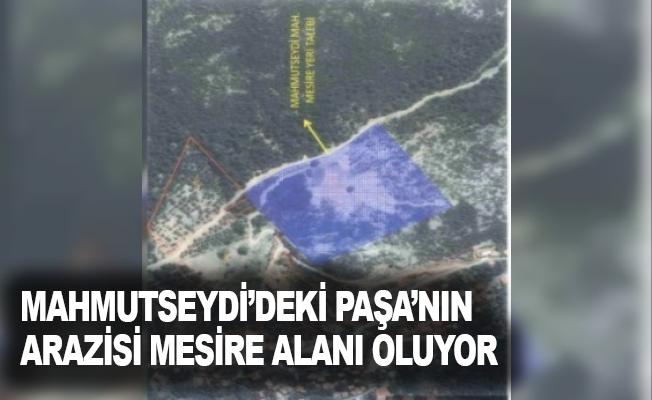 Mahmutseydi'deki Paşa'nın arazisi mesire alanı oluyor