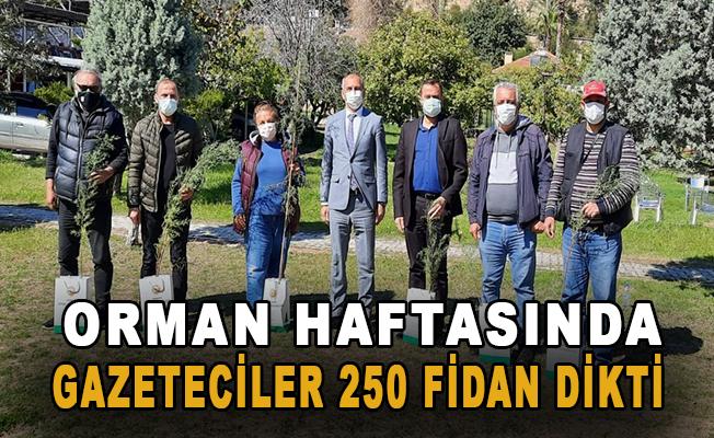 Orman Haftasında Gazeteciler 250 fidan dikti