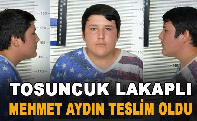 Son Dakika: Çiftlik Bank kurucusu 'Tosuncuk' lakaplı Mehmet Aydın, Brezilya'da teslim oldu