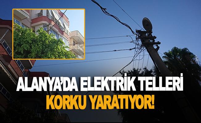 Alanya'da elektrik telleri korku yaratıyor