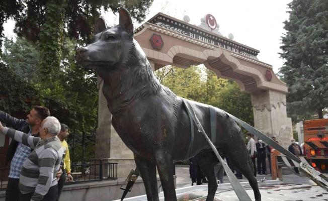 44 yıldır kayıp olan bozkurt heykeli müze müdürlüğü tarafından teslim alındı