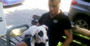 Köpeğini bulana 5 bin lira ödül verecek