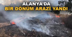 Alanya'da 1 dönüm arazi yandı