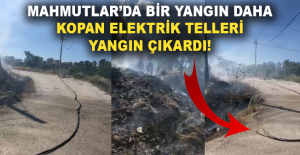 Alanya Mahmutlar#039;da bir yangın...