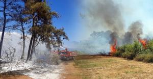 Ormanlık alanda yangın