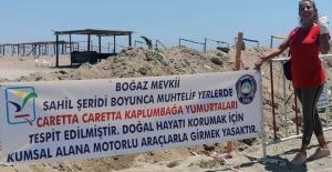 Caretta Carettaların yuvaları bozulmasın diye sahile hendekler kazılıp şerit çekildi