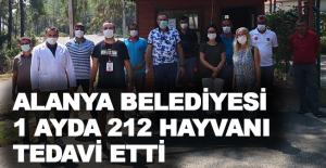 Alanya Belediyesi 1 ayda 212 hayvan tedavi etti