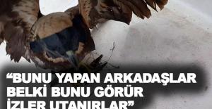 """Mehmet Karlık: """"Bunu yapan arkadaşlar belki bunu görür, izler, utanırlar"""""""