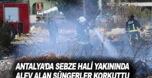 Antalya'da sebze hali yakınında alev alan süngerler korkuttu