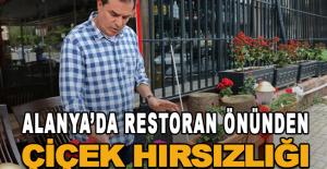 Alanya'da restoran önünden çiçek hırsızlığı