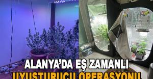 Alanya'da eş zamanlı uyuşturucu operasyonu