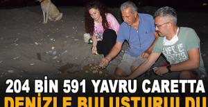 Antalya'da 2020 yılında 4 bin 853...